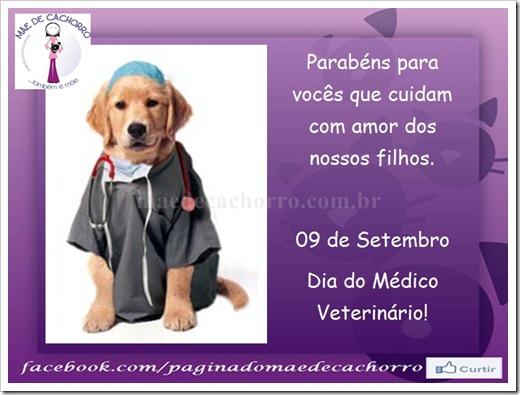 MDC dia do veterinário