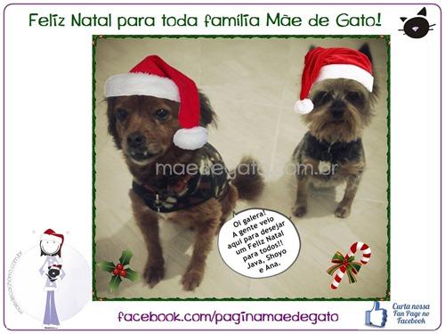 MDG Feliz Natal novo